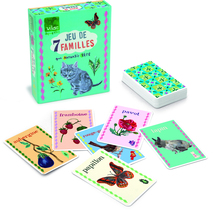 Nathalia L'Ete happy families games
