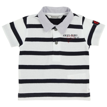 Black Stripped Polo Shirt - Navy Corporation