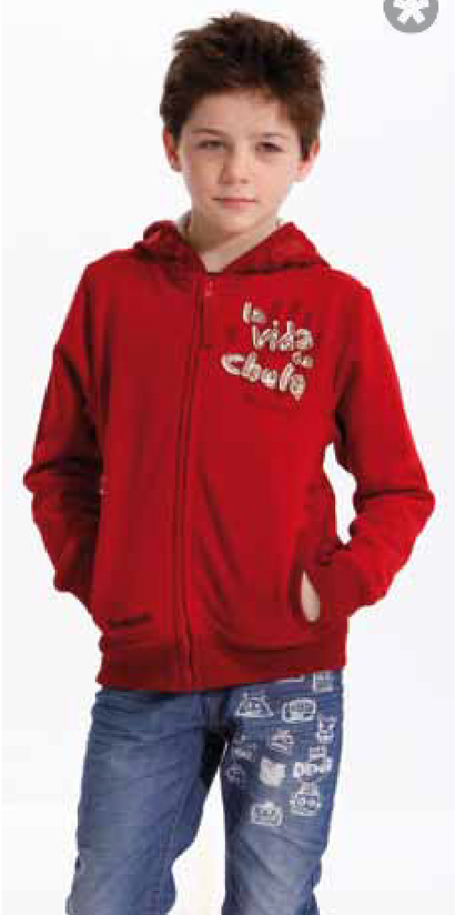 Moluccas - A smart dark maroon hoodie with graphic detail